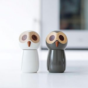 The Snowy Owl & The Pepper Owl